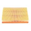 ไส้กรองอากาศ FOCUS (โฟกัส) / Air Filter
