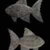 ปลาตะเพียนตัวใหญ่( ปลาประหยัด ) หลวงพ่อจง วัดหน้าต่างนอก จ.อยุธยา