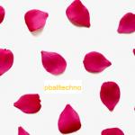 การวัดสีของดอกไม้โดยใช้เครื่องสเปกโตรโฟโตมิเตอร์