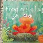 Frog on a Log (Usborne)