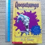 Goosebumps Flashing Special (Hardback)