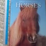 HORSES (Snapshot/ Picture/ Library) มีตำหนิที่ปกขาดด้านใน ตัวเล่มหลวมเล็กน้อย