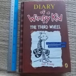 Diary of a Wimpy Kid: The Third Wheel (Hardback)