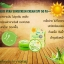 Aloe Vera Sunscreen Cream SPF50 PA+++ thumbnail 3