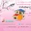 บ้านในฝันชูการ์-เเฮมเตอร์ (ตกเเต่งกรง) thumbnail 1