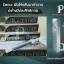 Placentier(พลาเซนเทียร์) หรือ อัศวินม้าดำ thumbnail 12