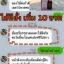 เซรั่มสลายฝ้า เข็มทอง สกิน แคร์ 10ml. thumbnail 8