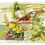 FW022 กระดาษแนพกิ้น 21x30ซม. ลายดอกไม้