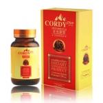 Cordy Plus