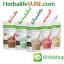 เฮอร์บาไลฟ์ โปรตีนเชค มี 5 รสชาติ Nutrition Protein Drink Mix thumbnail 1
