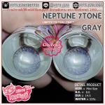 (mini)Neptune 7Tone Gray