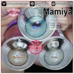 Mamiya Effect.16