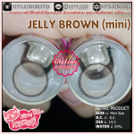 Jelly Brown (mini)