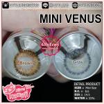 Mini Venus Effect.16