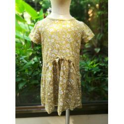 Next dress size 3-4t