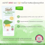 Nature Shady 3 in 1 Protection Sunscreen ผลิตภัณฑ์กันแดด กันยุง บำรุงผิว 6m+ thumbnail 3