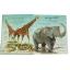 Big Book of Big Animals thumbnail 2
