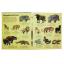 Big Book of Big Animals thumbnail 3
