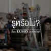 รู้หรือไม่? ปั๊มลม EUROX มีแบบใดบ้าง?