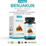 เบญจคุณ Benjakun Organic Herbs คุณ 5 ประการที่ช่วยมะเร็ง เบาหวาน ไต หัวใจ ความดัน