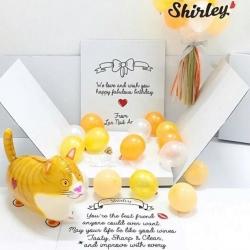 กล่องลูกโป่งวันเกิดพร้อมเลือกสัตว์1ตัว Ballons12