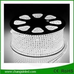 ไฟเส้น LED แบบแบน ROPELIGHT SMD 5050/8mm AC 220v White ยาว 100เมตร