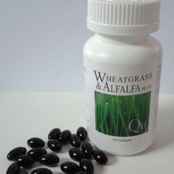 มีขายแล้วที่นี่ ผักเม็ดนิวไลฟ์ New Life Alfalfa ราคาลดถึง 30% ส่งฟรี