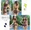 SM-V1-212 ชุดว่ายน้ำแฟชั่น คนอ้วน เด็ก ดารา thumbnail 4