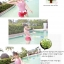 SM-V1-124 ชุดว่ายน้ำแฟชั่น คนอ้วน เด็ก ดารา thumbnail 2