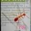 หนังสือเตรียมแยกมาลง thumbnail 96