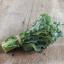 บล็อคโคลี่ดิชิคโค่ - Di Cicco Broccoli thumbnail 2