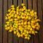 พริกไบควินโฮสีเหลือง - Yellow Biquinho Pepper thumbnail 2
