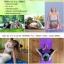 เสื่อโยคะ PVC yoga mat thumbnail 4