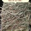 หญ้าทิมโมธี แอนเดอสัน พรีเมี่ยมเกรด ค้ท1 แบบฟ่อน 25 kg