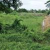 ที่ดินเปล่า 1ไร่ 1ตร.ว ติดถนนสายวัดไผ่โรงวัว บางตาเถร สองพี่น้อง สุพรรณบุรี