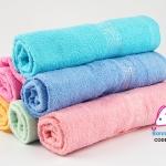 ผ้าขนหนู ผ้าเช็ดตัว เด็กอ่อน / Baby towel