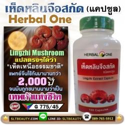 เห็ดหลินจือสกัด Herbal One ★ น้ำพุแห่งชีวิต เทพเจ้าแห่งการฟื้นฟูร่างกาย ★ บรรจุ 100 แคปซูล