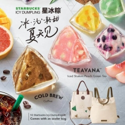 STARBUCKS Premium Gift Cooler Bag
