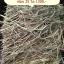 หญ้าทิมโมธี แอนเดอสัน พรีเมี่ยมเกรด ค้ท1 แบบฟ่อน 25 kg thumbnail 1