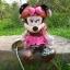 ตุ๊กตาคู่ Mickey & Minnie โจรสลัด thumbnail 4