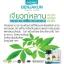 เบญจคุณ วิตามิน BENJAKUN Organic Herbs thumbnail 11