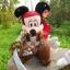 ตุ๊กตาคู่ Mickey & Minnie โจรสลัด thumbnail 5