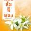 ดอกส้มสีทอง (มงกฎดอกส้ม 2) thumbnail 1