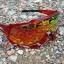 แว่นตา 100% รุ่น SPEEDTRAP thumbnail 3