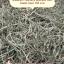 ทิมโมธี แอนเดอสัน พรีเมี่ยม คัท2 (ออกใบ เส้นนิ่ม) ร่อนฝุ่น 1 kg thumbnail 1