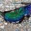 แว่นตา 100% รุ่น SPEEDTRAP thumbnail 1