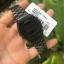 Casio รุ่น B640WB-1BEF thumbnail 2
