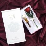 L'amour En Rose Brush Limited Edition แปรงแต่งหน้าด้ามคริสตัลสีแดง ที่ได้รับแรงบันดาลใจจากหิน Rhodolite Crystal สลักชื่อได้ฟรี