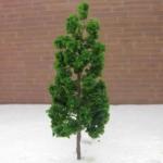 ต้นไม้จิ๋ว สูง 9 ซ.ม. ชุด 10 ต้น
