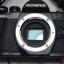 กล้อง Olympus OM-D EM10 Mark ll สภาพ 99% thumbnail 5